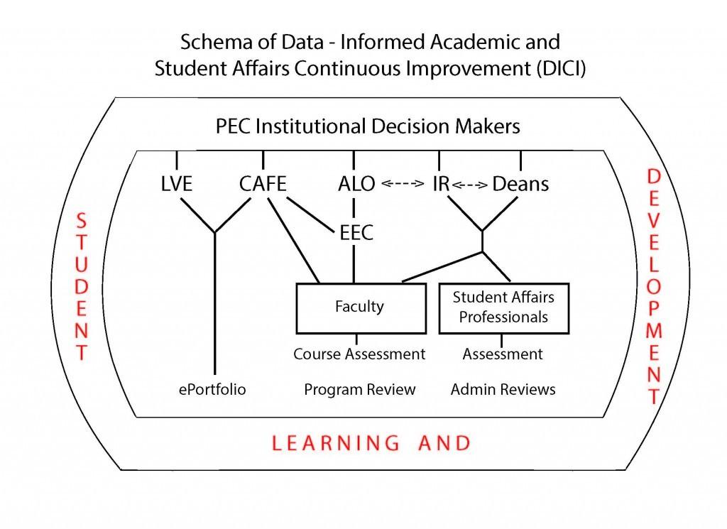 Assessment Organizational Chart