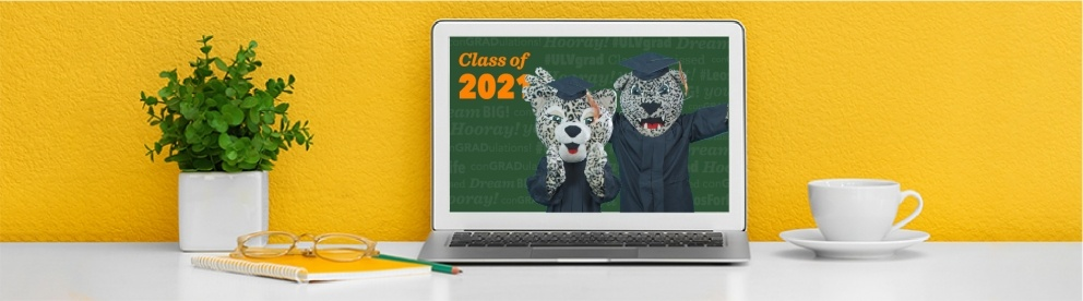 Virtual Commencement Backgrounds Banner