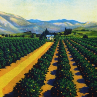 University of La Verne Receives $500,000 Gift from Citrus Roots – Preserving Citrus Heritage Foundation